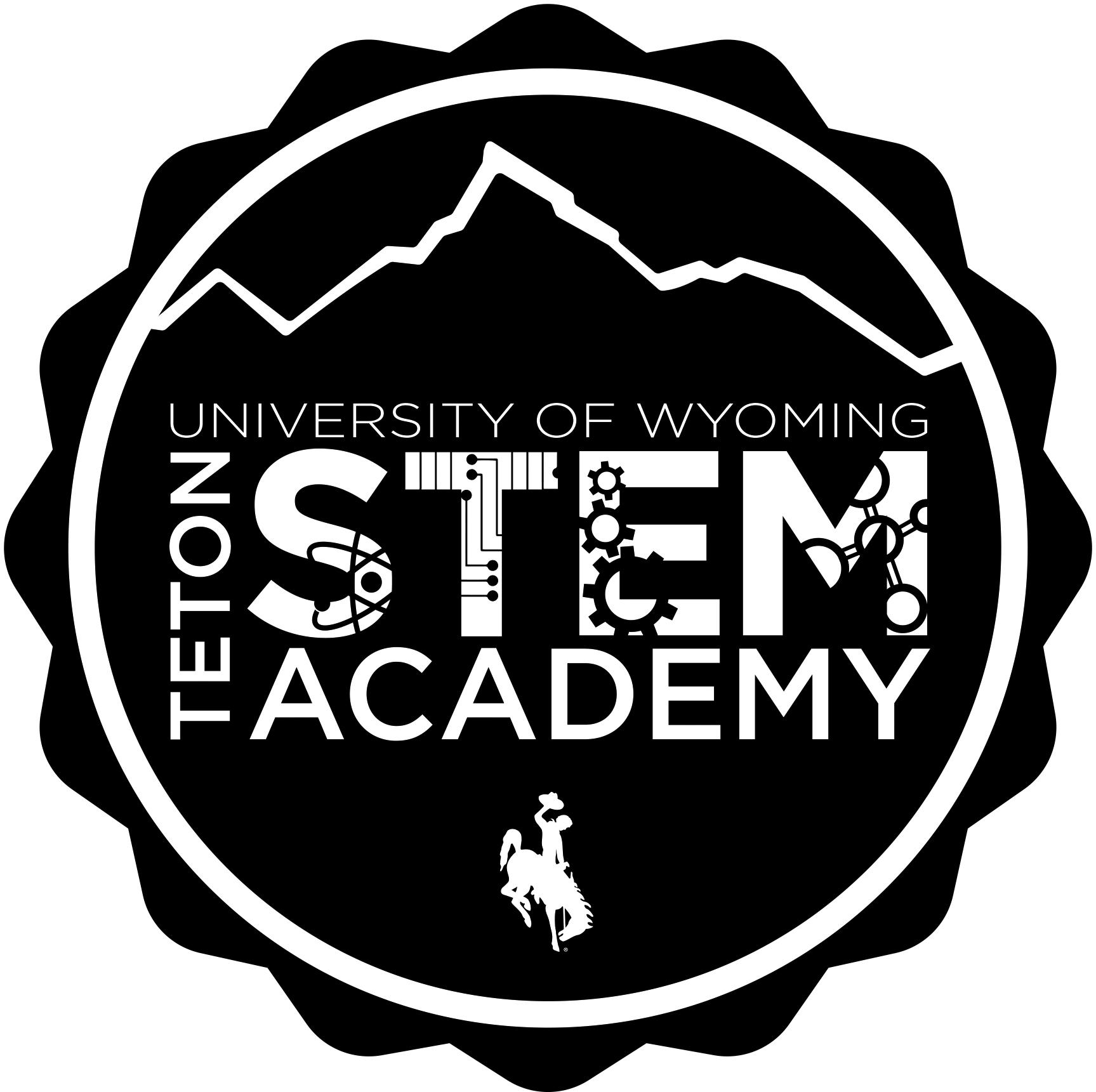 STEM 5D