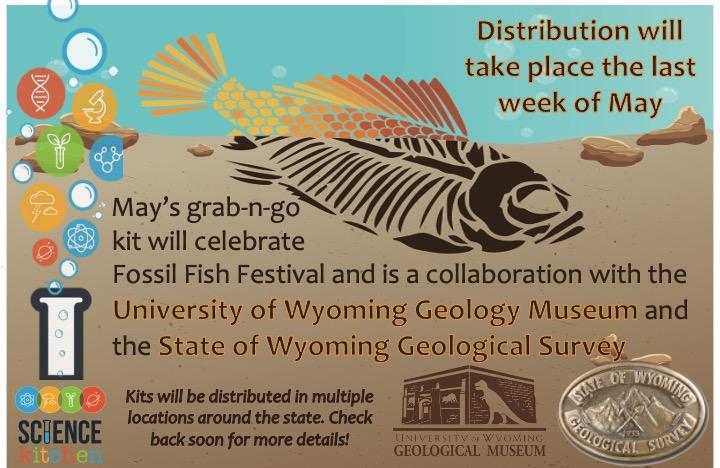 Fossil Fish Postcard