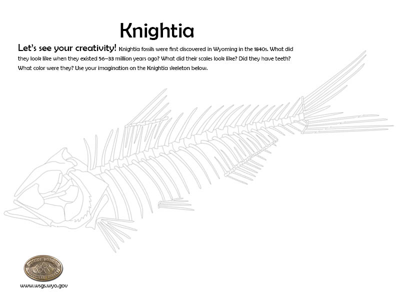 Knightia coloring sheet