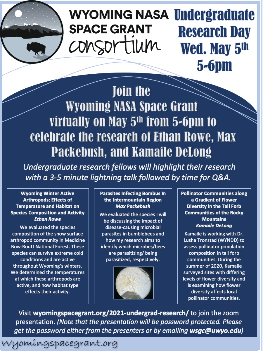 May 5 Space Grant UG Research Presentations
